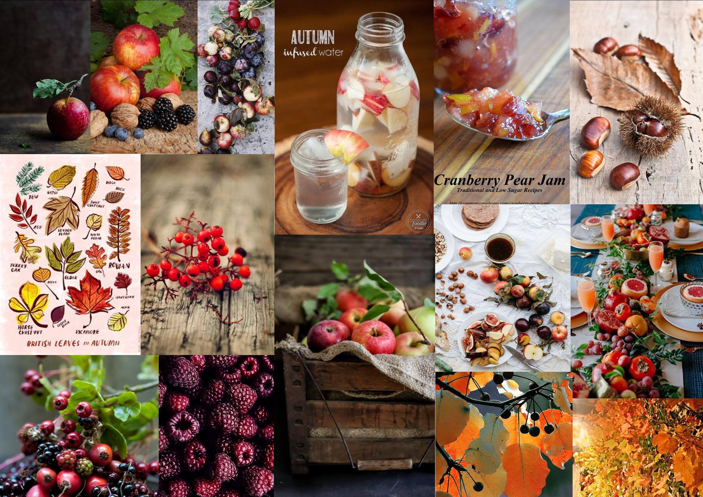 Assignment2_autumnfruits_sampleboard