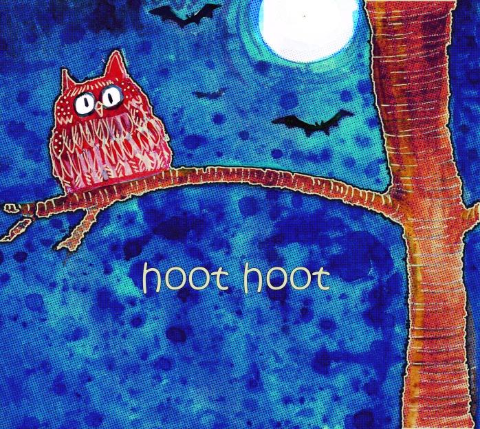 explore owl