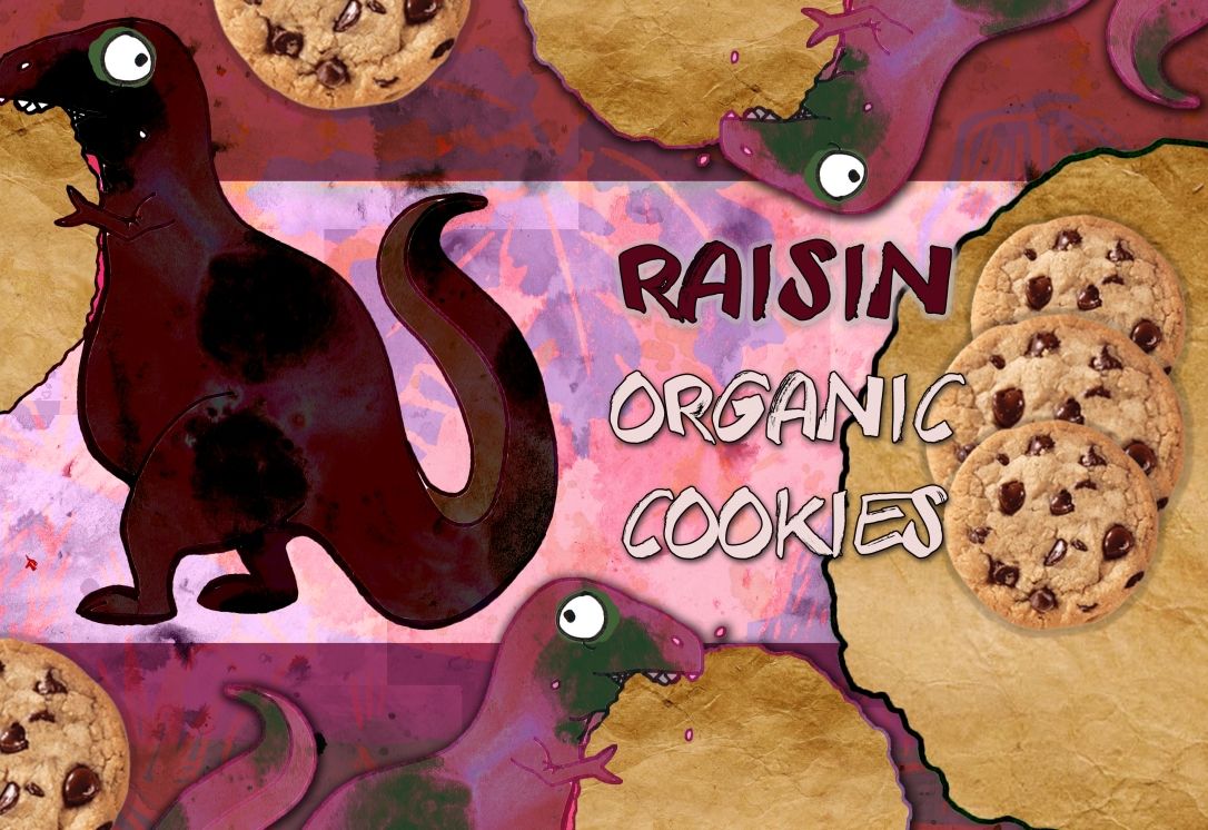 Organic cookies final