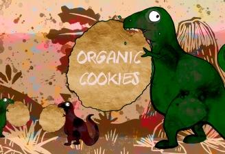 Organic cookies1